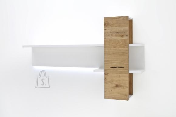 MCA Seinariiul CESINA tamm, 170x25xH100 cm
