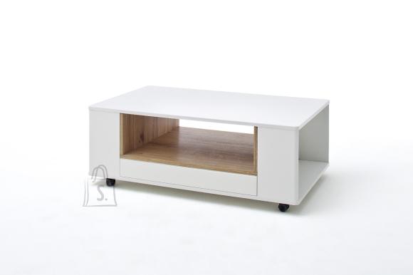 MCA Diivanilaud CESINA valge / tamm, 115x70xH42 cm