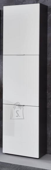 Trendteam Vannitoakapp CONCEPT1 valge / hall, 40x31xH192 cm