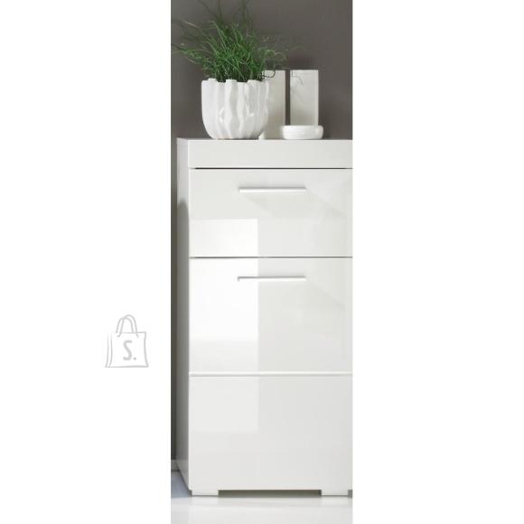 Trendteam Vannitoakapp AMANDA valge kõrgläige / valge, 37x31xH79 cm