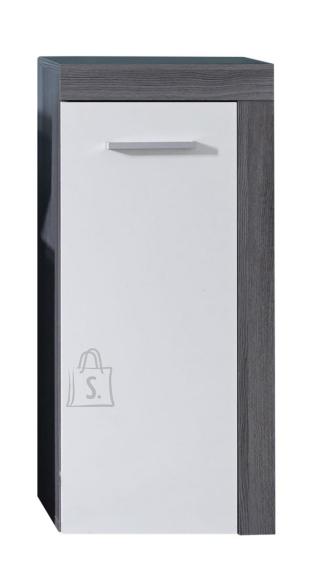Trendteam Vannitoakapp MIAMI valge / hall, 36x31xH81 cm