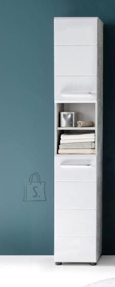 Trendteam Vannitoakapp NANO valge kõrgläige / hall, 32x28xH182 cm
