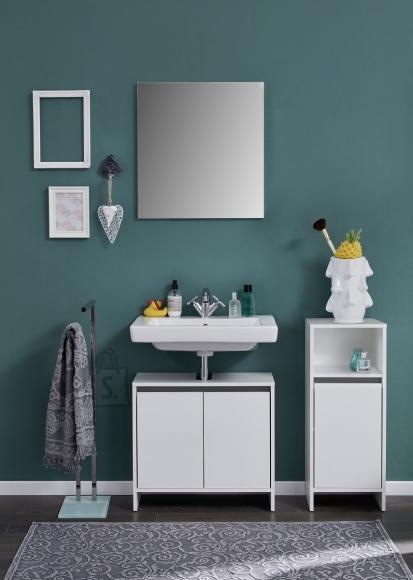 Trendteam Vannitoamööbli komplekt BASIX valge