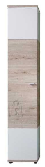 Trendteam Vannitoakapp CAMPUS tamm / valge, 36x31xH189 cm