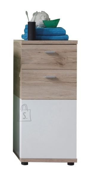 Trendteam Vannitoakapp CAMPUS tamm / valge, 36x31xH81 cm