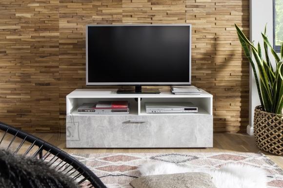 Trendteam Tv-alus UNO valge / hall, 120x42xH45 cm