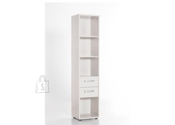Schildmeyer Kontoririiul RIGA helehall, 40x34xH182 cm
