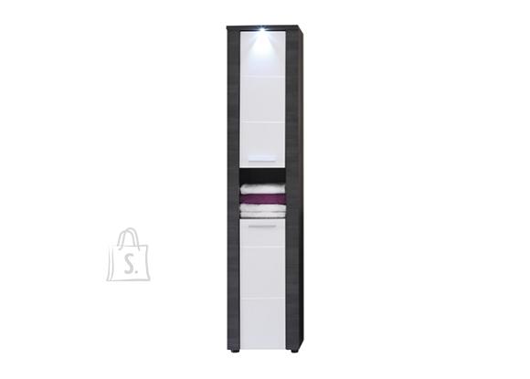 Trendteam Vannitoakapp XPRESS hall / valge, 40x29xH184 cm LED
