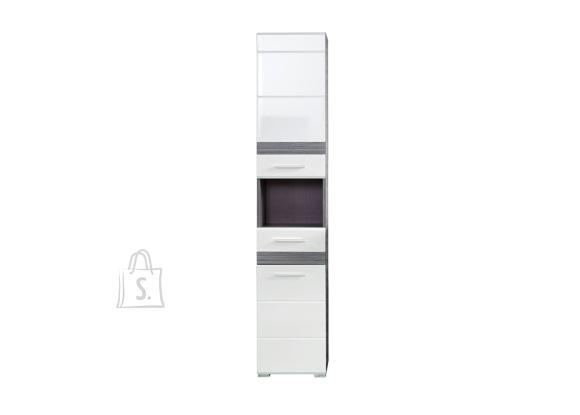 Trendteam Vannitoakapp SET-ONE valge läige / tumehall, 37x31xH182 cm