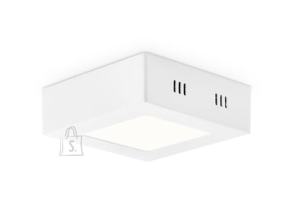 Home Sweet Home Laevalgusti SKA valge, 12x12xH3,6 cm, LED