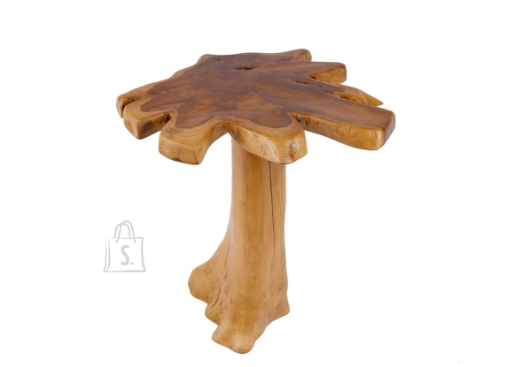 Diivanilaud ROOT tiigipuu, 50x50xH60 cm
