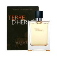 Hermes Terre D Hermes 100ml meeste tualettvesi EdT