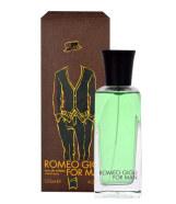 Romeo Gigli Romeo Gigli for Man tualettvesi meestele EdT 125ml