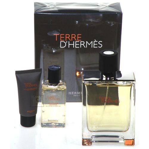 Hermes Terre D Hermes meeste lõhnakomplekt EdT 155ml