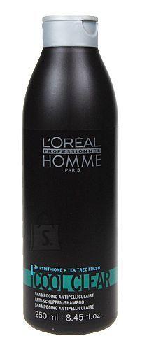 L´Oreal Paris Homme Cool Clear šampoon 250 ml