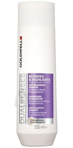Goldwell Dualsenses Blondes Highlights juuksešampoon 250 ml