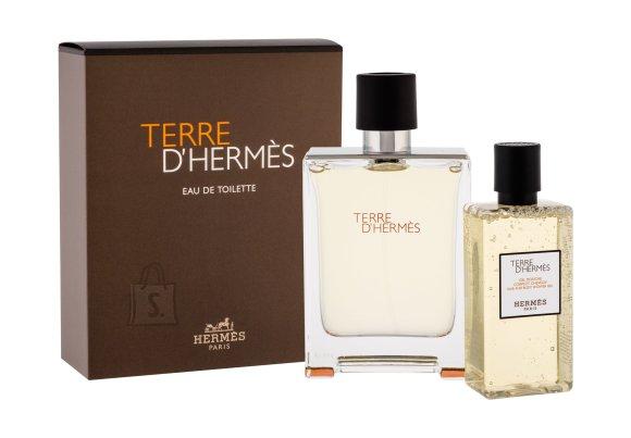 Hermes Terre D´Hermes Eau de Toilette (100 ml)