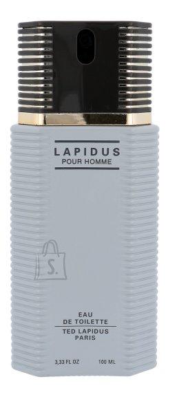 Ted Lapidus Men 100ml meeste tualettvesi EdT