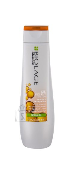 Matrix Biolage Shampoo (250 ml)