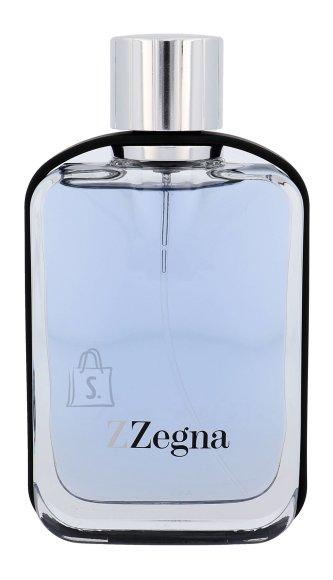 Ermenegildo Zegna Z tualettvesi meestele EdT 100ml
