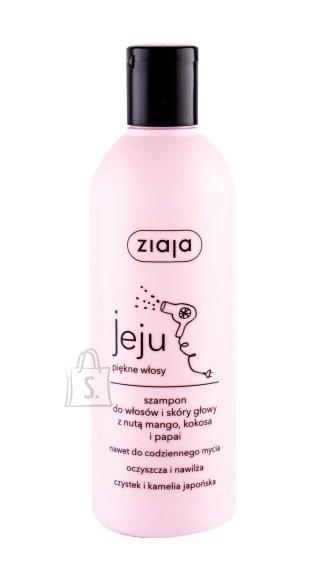 Ziaja Jeju Shampoo (300 ml)