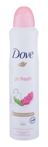 Dove Go Fresh Antiperspirant (250 ml)