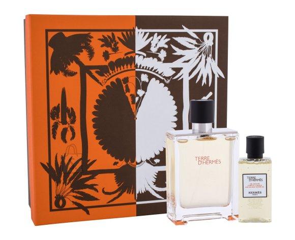 Hermes Terre d´Hermes Shower Gel (100 ml)