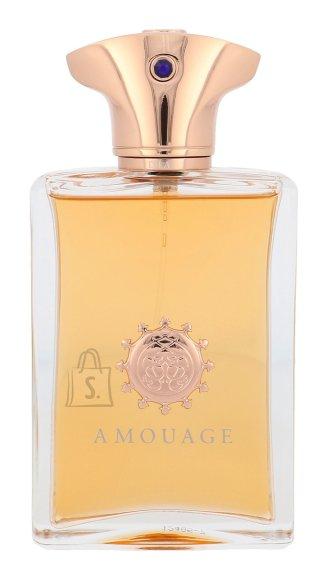 Amouage Dia pour Homme parfüümvesi EdP 100 ml