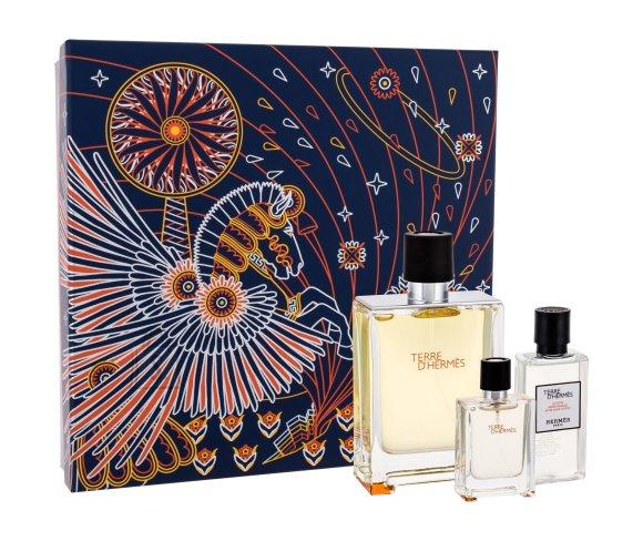 Hermes Terre d´Hermes lõhnakomplekt EdT 100 ml