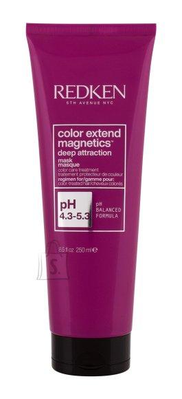 Redken Color Extend Magnetics Hair Mask (250 ml)