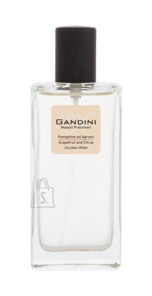 Gandini 1896 Grapefruit and Citrus Eau de Toilette (50 ml)