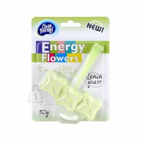 RAVI ENERGY FLOWERS WC värskendaja 50g Lemon Grass