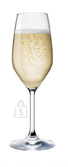 Bormioli Divino Calice šampusepokaal 24cl B6 /600