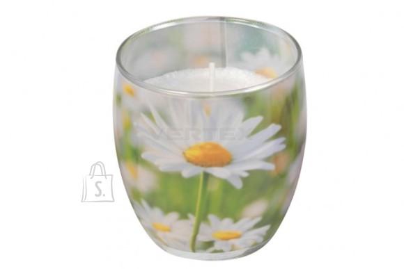 Gies Lõhnasteariinküünal dekoreeritud klaasis, Daisy Meadow
