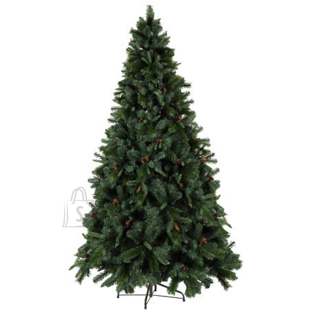 Star Kuusk Toronto 300x170cm roheline käbidega