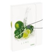 Herlitz kaaned kummiga Frech Lime  A4/4cm