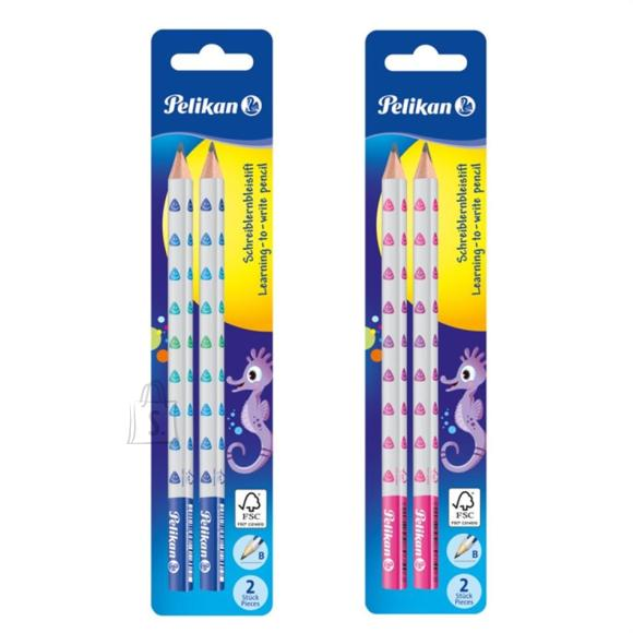 Herlitz harilik pliiats B 2tk (bl) jäme sinine või roosa