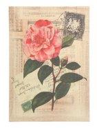Trükipilt Linen roos
