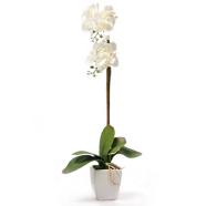 Valge kunstlill orhidee 1 topelt oksaga, H75cm