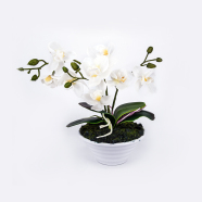 Valge kunstlill orhidee 3 oksaga 30 cm