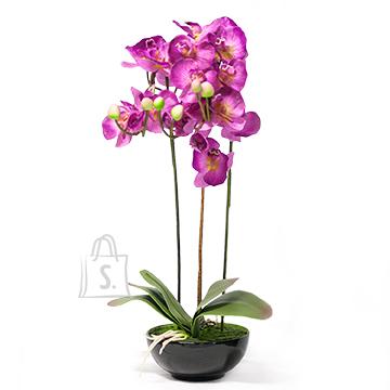 Roosa kunstlill orhidee