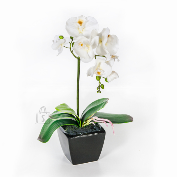 Valge kunstlill orhidee 1 oksaga 42 cm