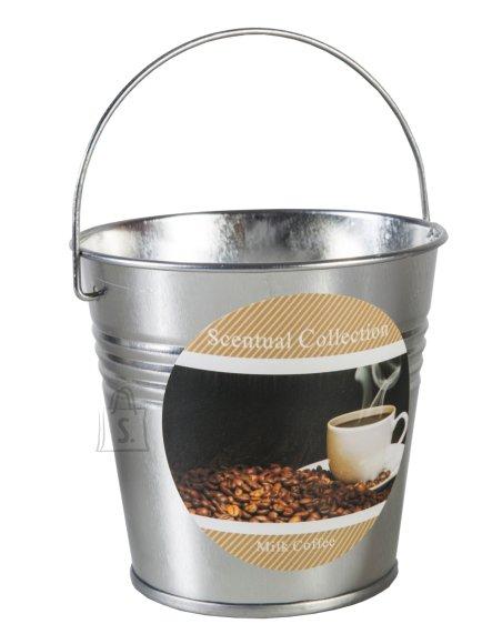 Küünal Tin milk coffee lõhnaline