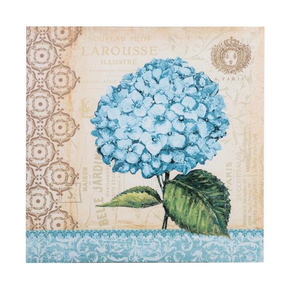 Trükupilt sinine Hortensia