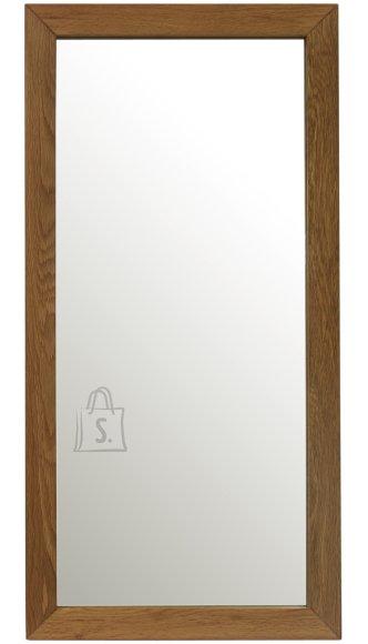 Peegel Mondeo