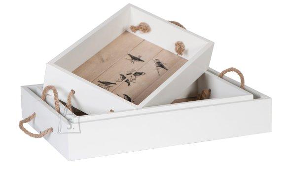 Kandikukomplekt  Birds