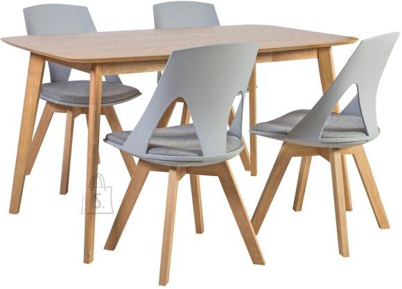 Söögilauakomplekt Enrich 4-tooliga Sanders