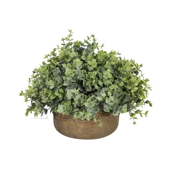 Roheline kunsttaim In Garden 30x25 cm