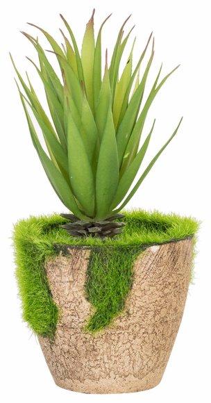 Roheline kunsttaim Kaktus In Garden  18cm