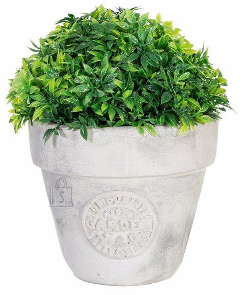 Roheline kunstpõõsas Buxus 14cm